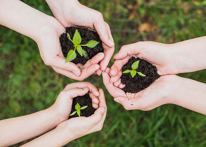 Politica de sostenibilidad Tolsa